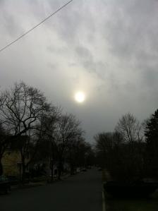 Winter Sun, Jan. 2013