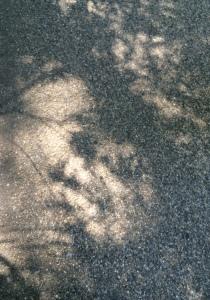 Shadows in Carlisle 09.06.15