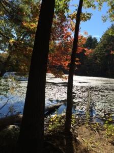 Concord, MA 10.11.15